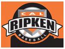 Cal Ripken 131x100